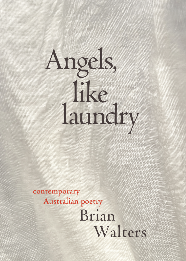 Book cover for Angels like laundry by Brian Walters
